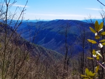 Linville Gorge as seen from the Little Table Rock trail